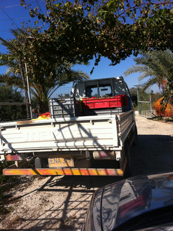 A short journey to the olive mill