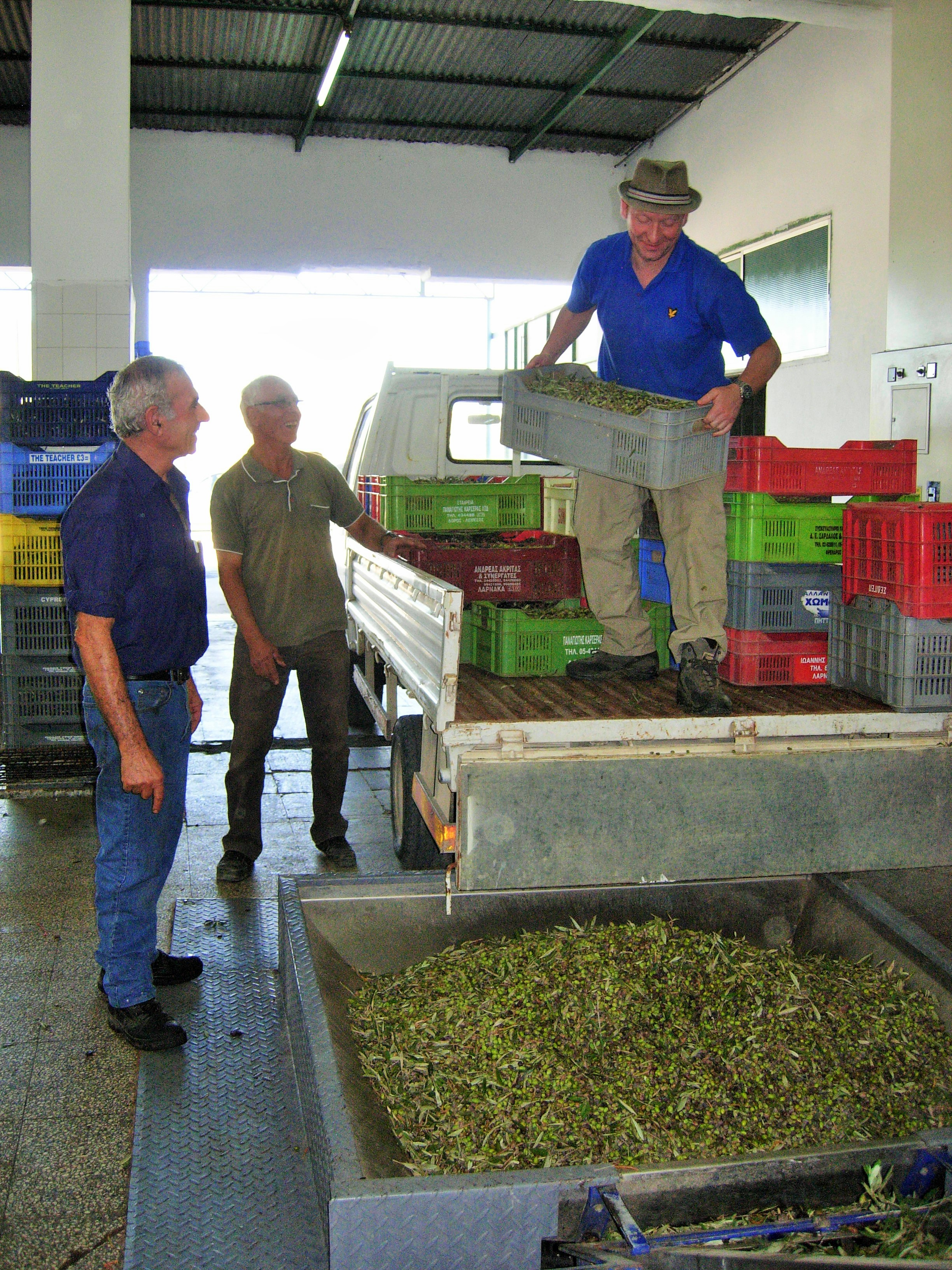 Loading the olives