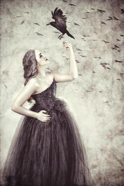 Elaine Kalvelage Photography
