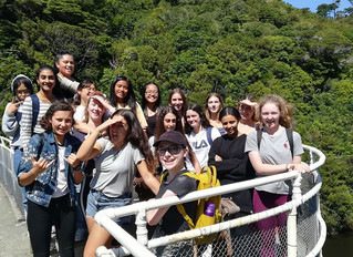 Level 2 Biology students at Zealandia.