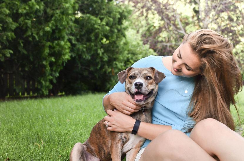 Dog Obedience Training | Iowa | Loyal Start Dog Training, LLC