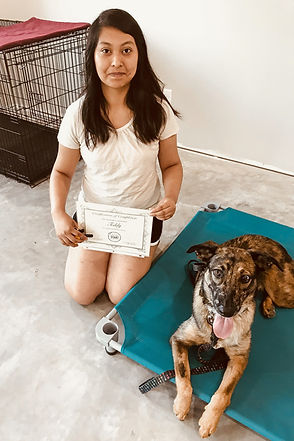 gretta_obedience-training-client-review_