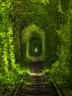 Tunnel of love. Ukraine