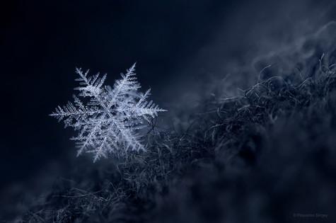 Snowflake on a glove