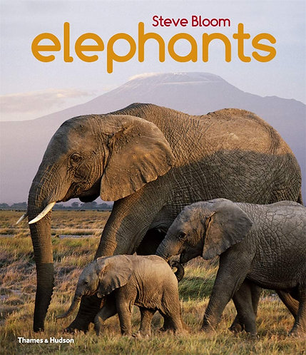 Elephants: A Book for Children by Steve Bloom