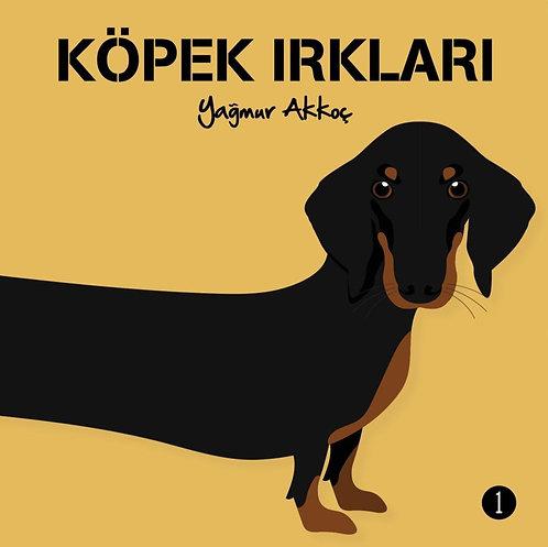 Köpek Irkları by Yağmur Akkoç