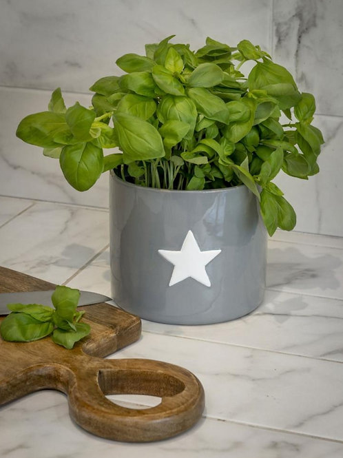 Large Grey Pot With White Star **IMPERFECT**