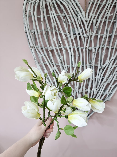 White & Green Magnolia Branch