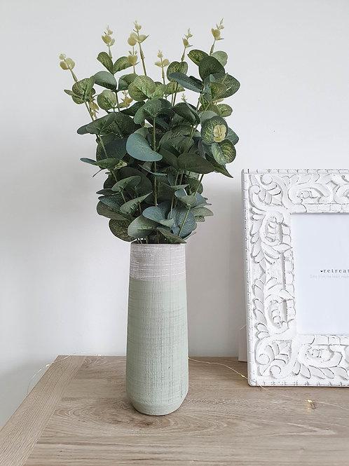 Single Stem Eucalyptus Bush
