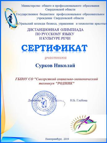 Сертификат участника Сурков Сысерть.jpg
