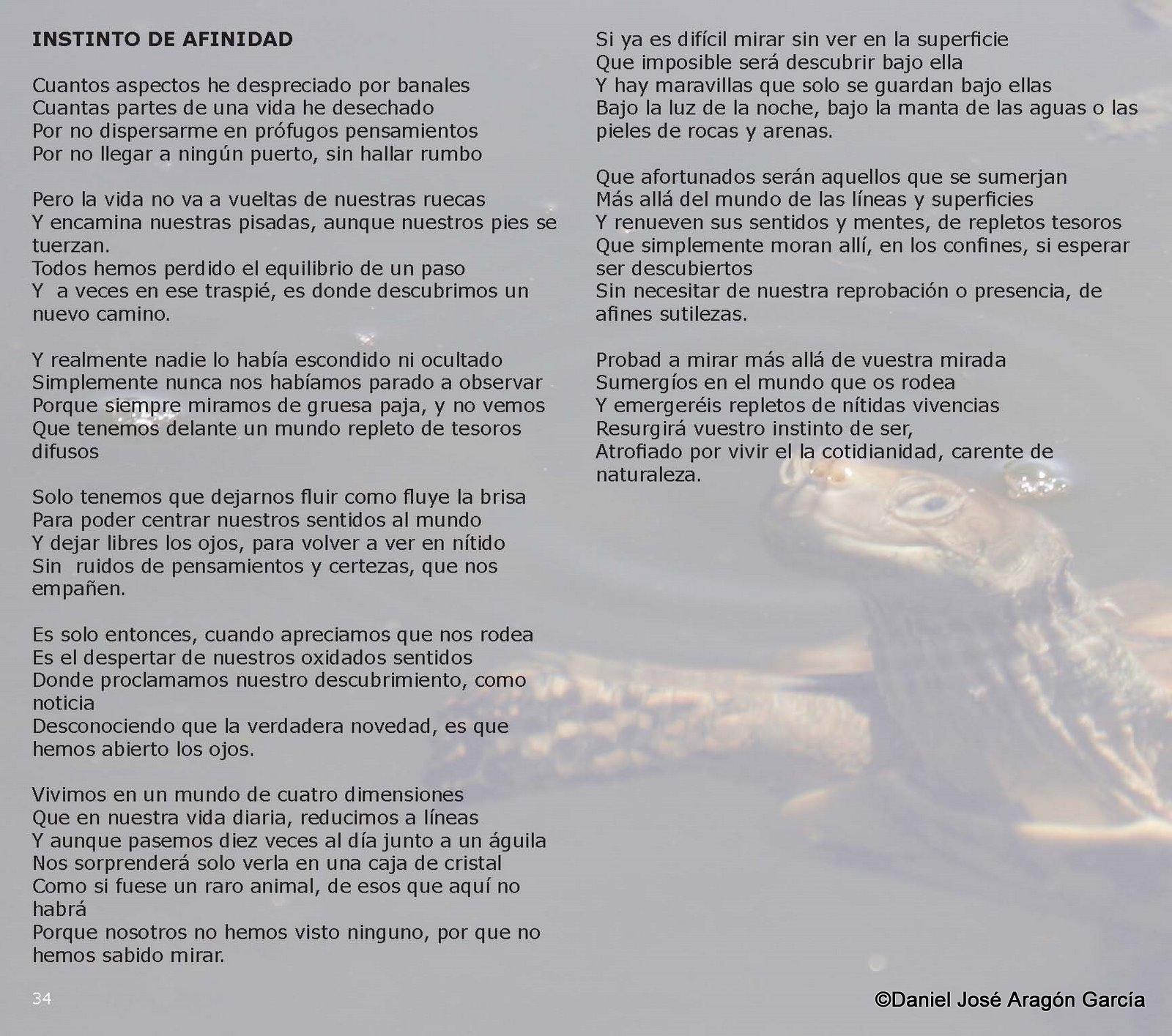 pag34-Alquimia de Luz