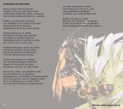 pag36-Alquimia de Luz