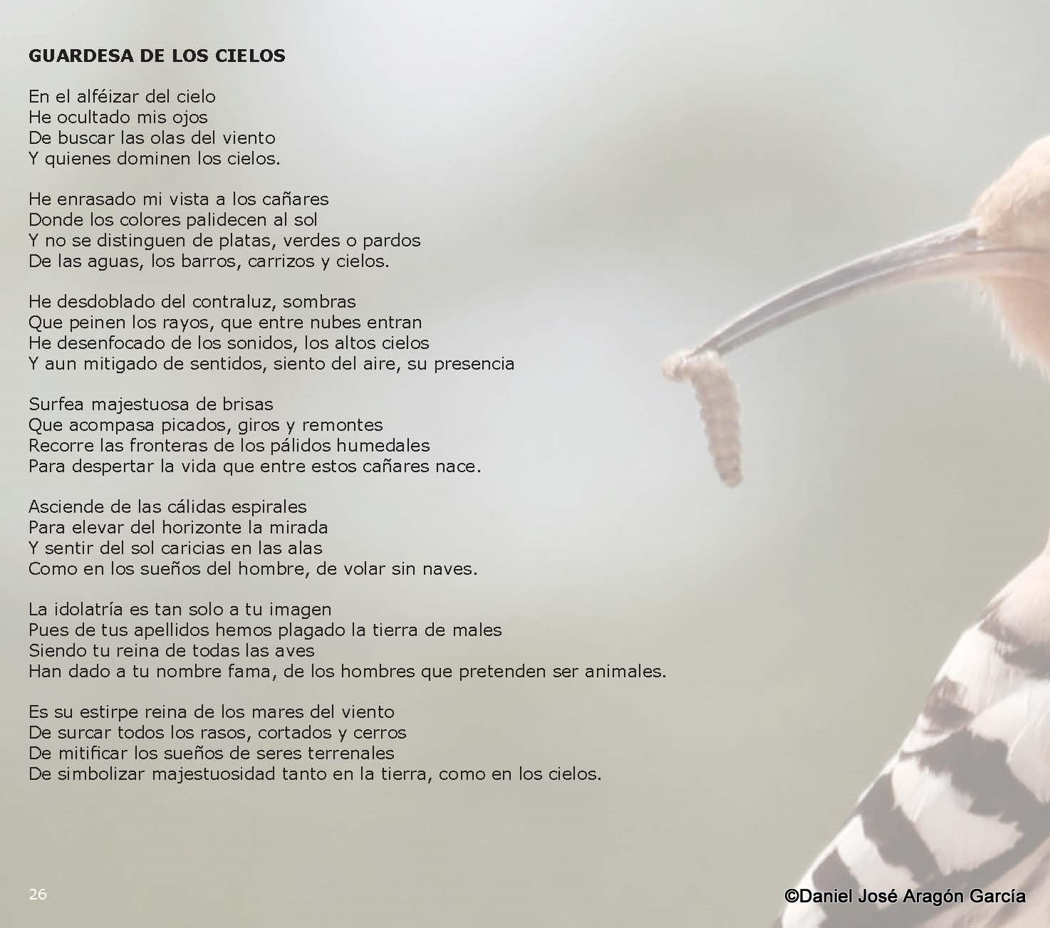 pag27-Alquimia de Luz