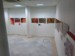 espacio expositivo sin publico