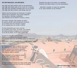 pag20-Alquimia de Luz