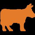 Orange Cow Icon