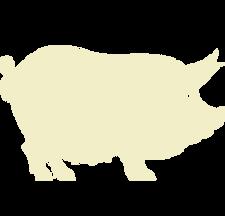White Pig Icon