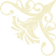 Corner textured flower icon