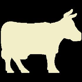 White Cow Icon