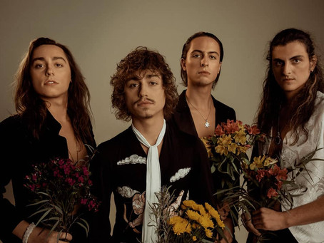 Greta Van Fleet slipper video