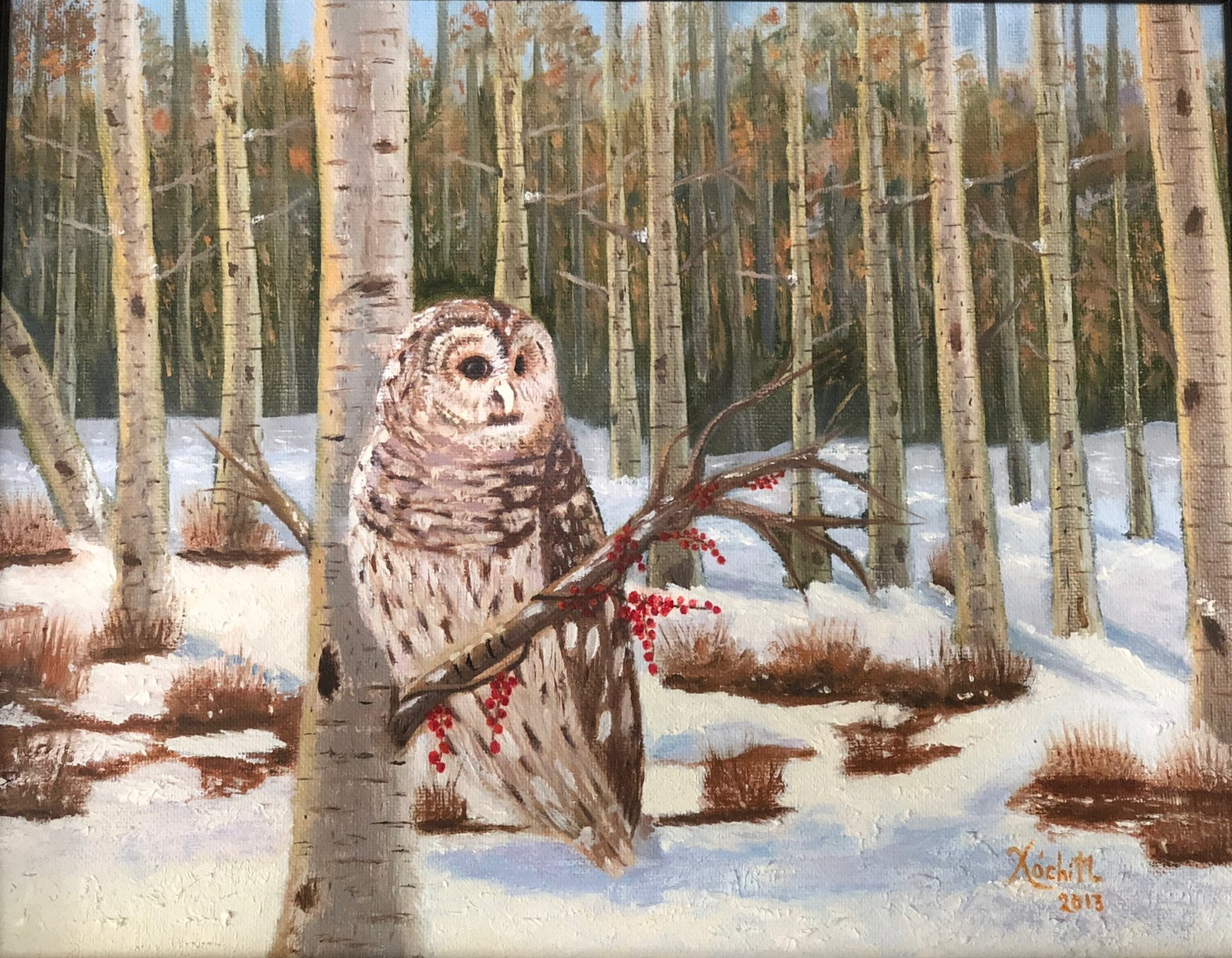 Owl on a Snowy Day