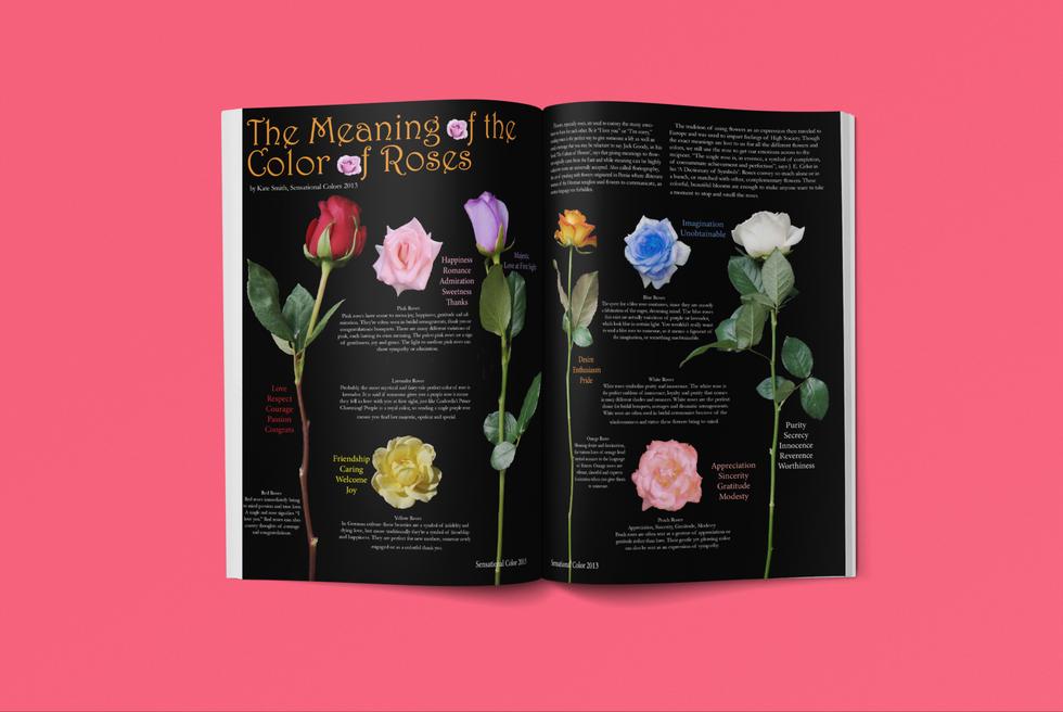 Rose Magazine Article
