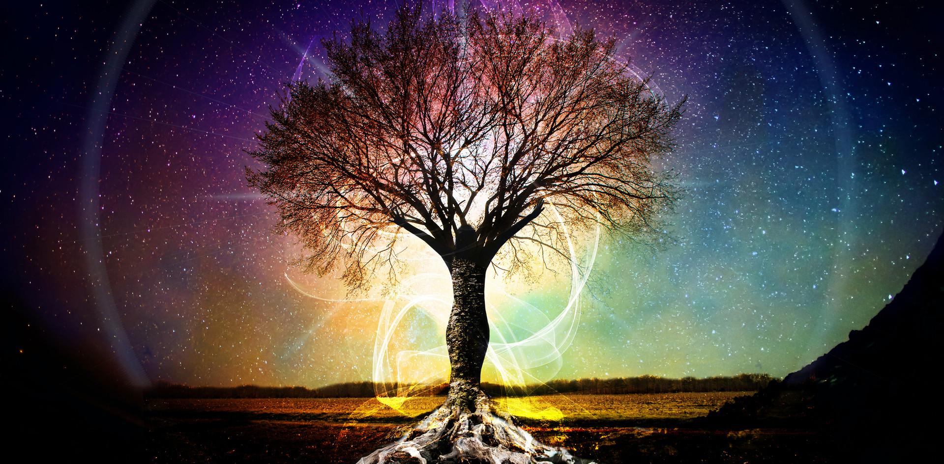 Infinite You Tree