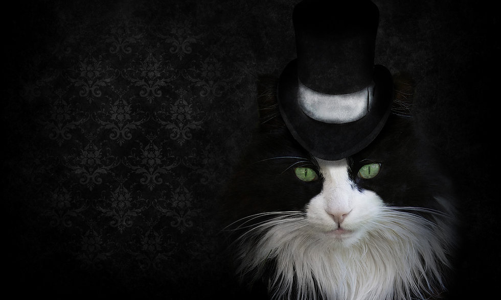 Phantom Background.jpg