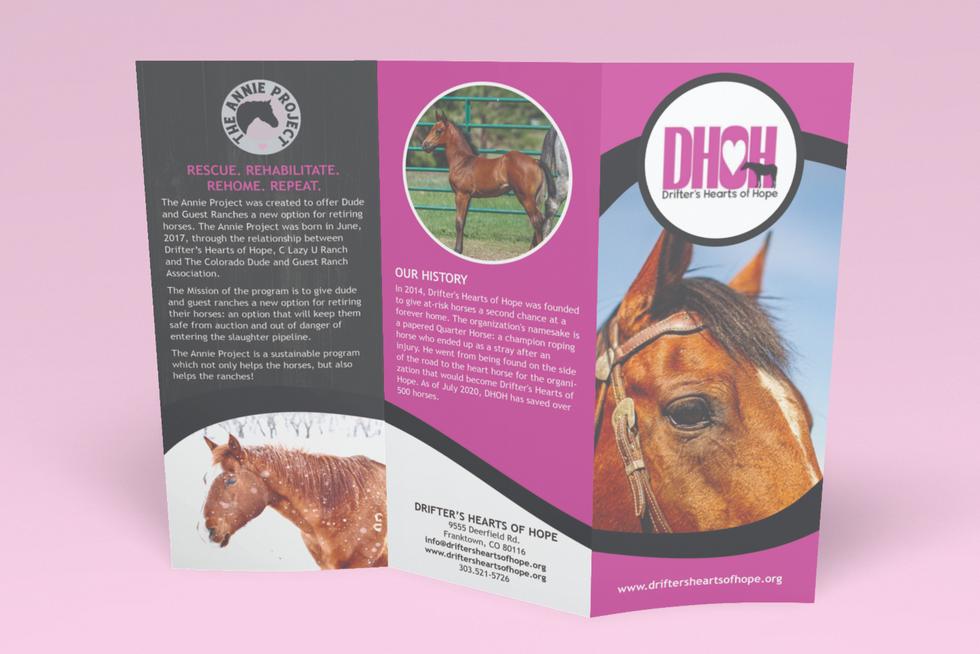 DHOH Brochure Outside