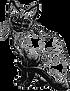 Siamese Cat Sketch.png
