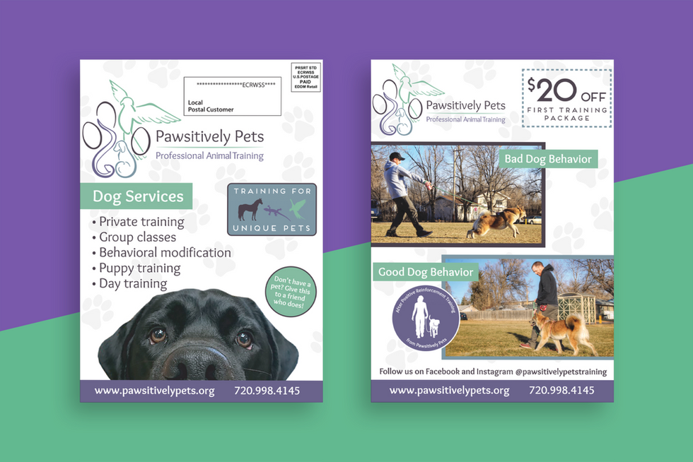 Pawsitively Pets Mailer