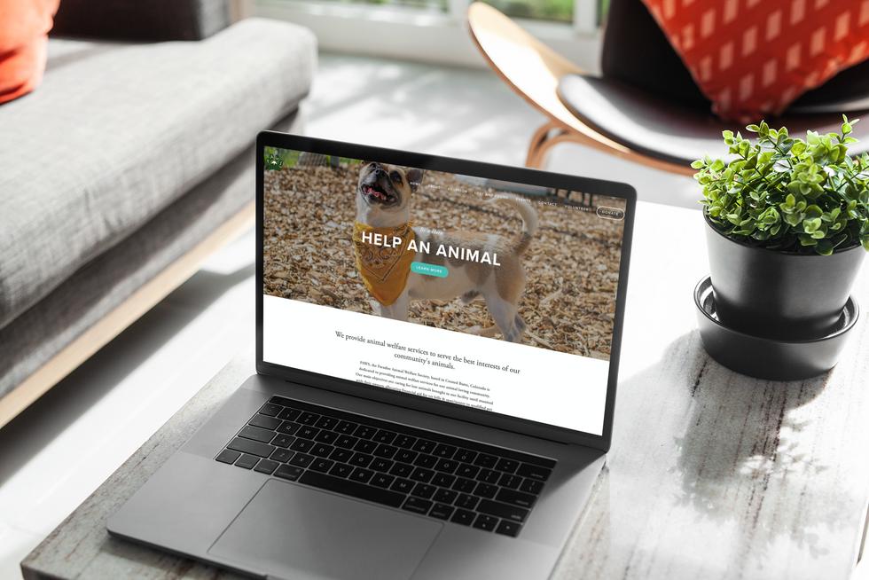 PAWS Website