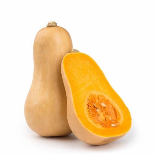 Zucca Butternut (Violiona)