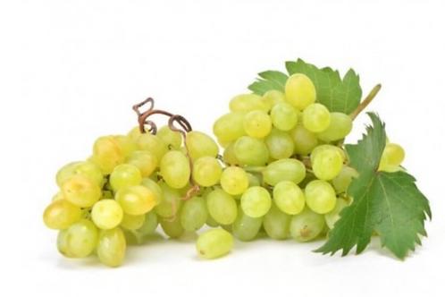 Uva Bianca senza semi - 1 grappolo 500gr