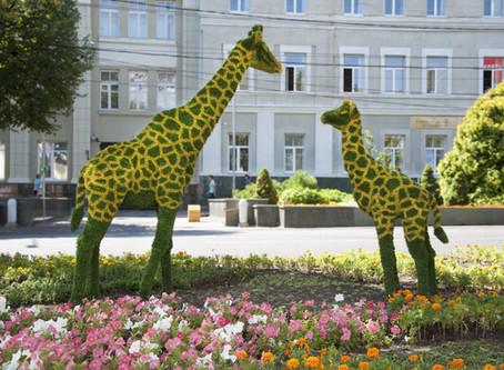 3 причины переехать в Ставрополь