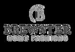 brewster logo.png