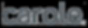 carole logo.png