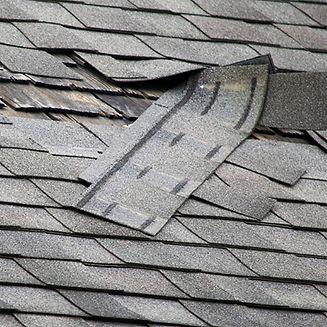shingles roof damage - Ridley, PA