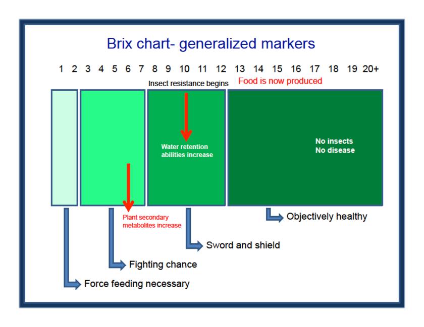 brix-chart.png