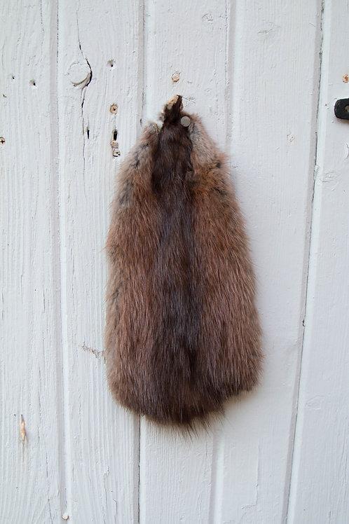 muskrat wall hange fur