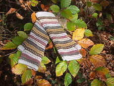 gloves in woodland