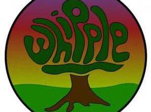 whipple.jpg