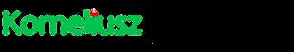 logo Serwis Komputerowy Korneliusz