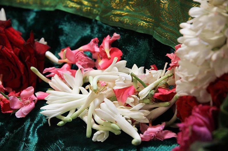 Navaratri Primeiro Dia Meenakshi 12