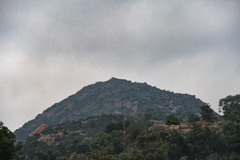 Karthigai Deepam - 2019 - Foto 10