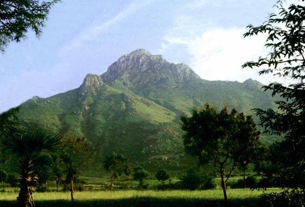 Arunachala-green-1024x694.jpg