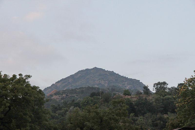 Karthigai Deepam - 2019 - Foto 17