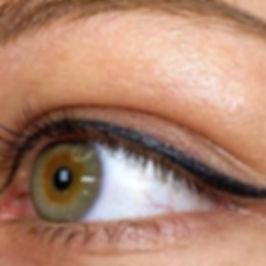 eye liner net.jpg