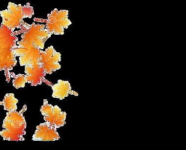 l-érable-part-de-illustration-vecteur-feuillage-d-automne-sur-le-fond-transparent-12758853