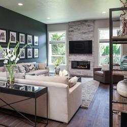 2017 Modern Fireplace Trends